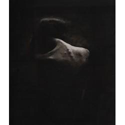 Define me - grafică în cărbune pe hârtie, artist Edmona