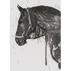 Destoinic - grafică în cărbune pe hârtie, artist Edmona