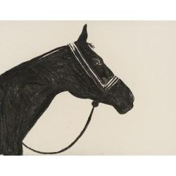 Emisar - grafică în cărbune pe hârtie, artist Edmona