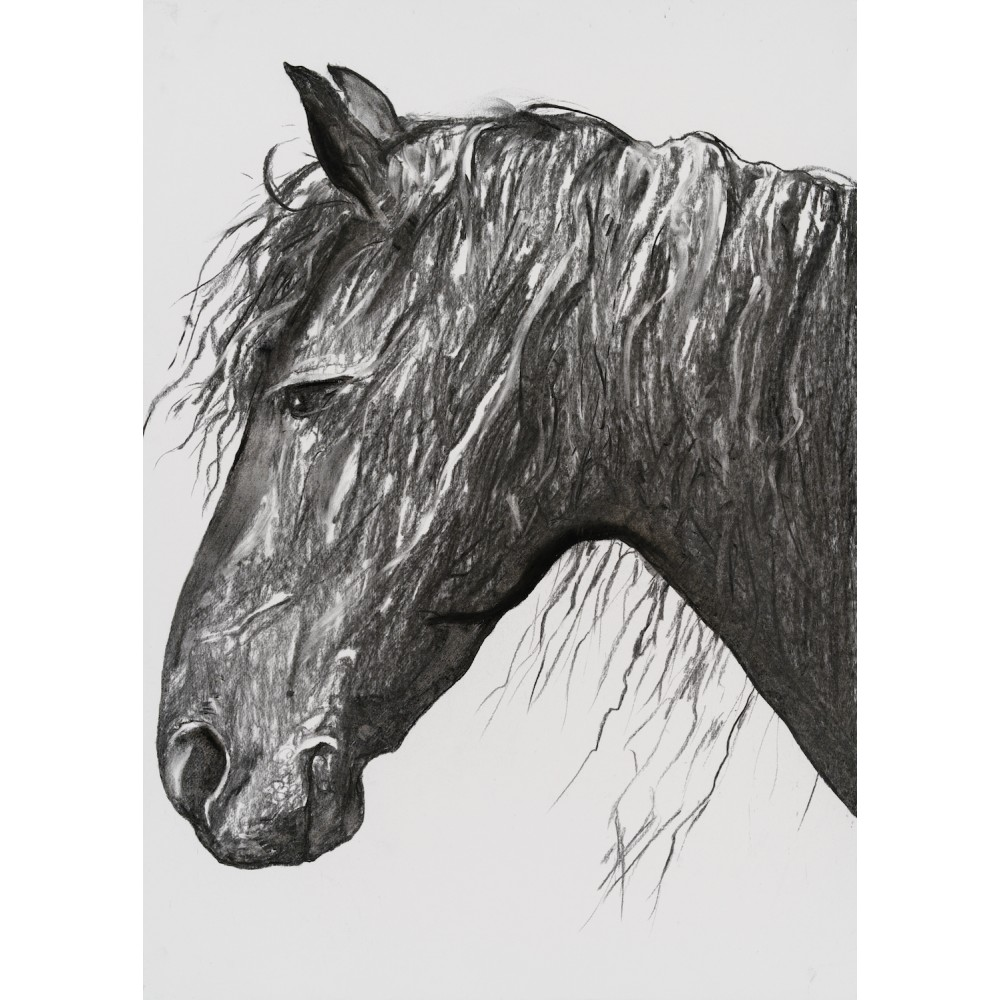 Pregătire - grafică în cărbune pe hârtie, artist Edmona