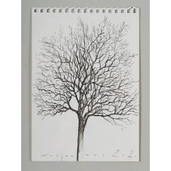 Arbore II - grafică pe hârtie, artist Iurie Cojocaru