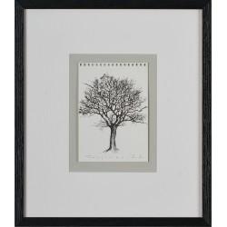 Arbore I - grafică pe hârtie, artist Iurie Cojocaru