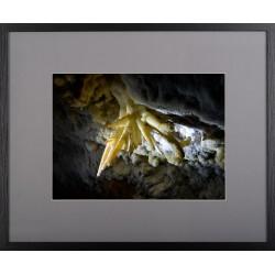 Comori împietrite - fotografie, artist Radu Pop